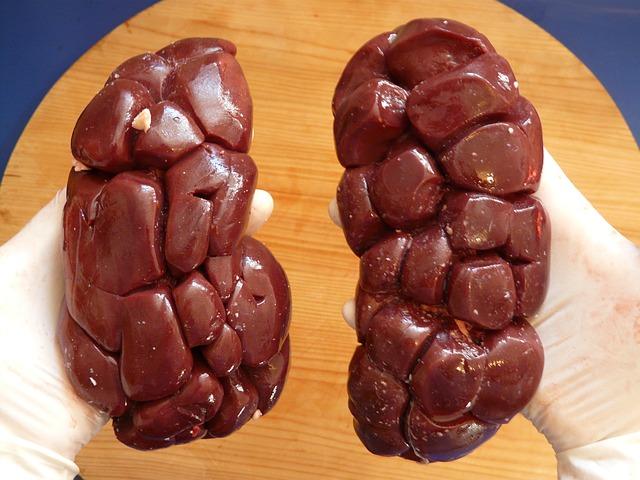hovězí ledvina