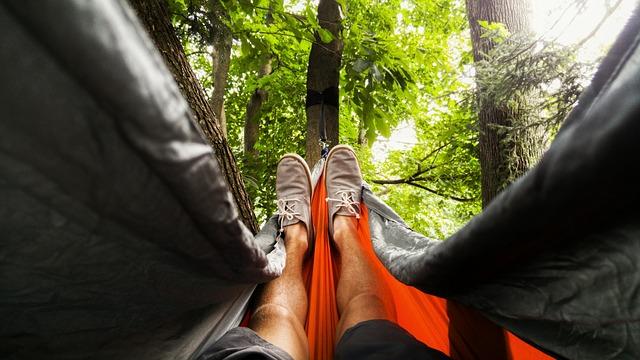 relax mezi stromy